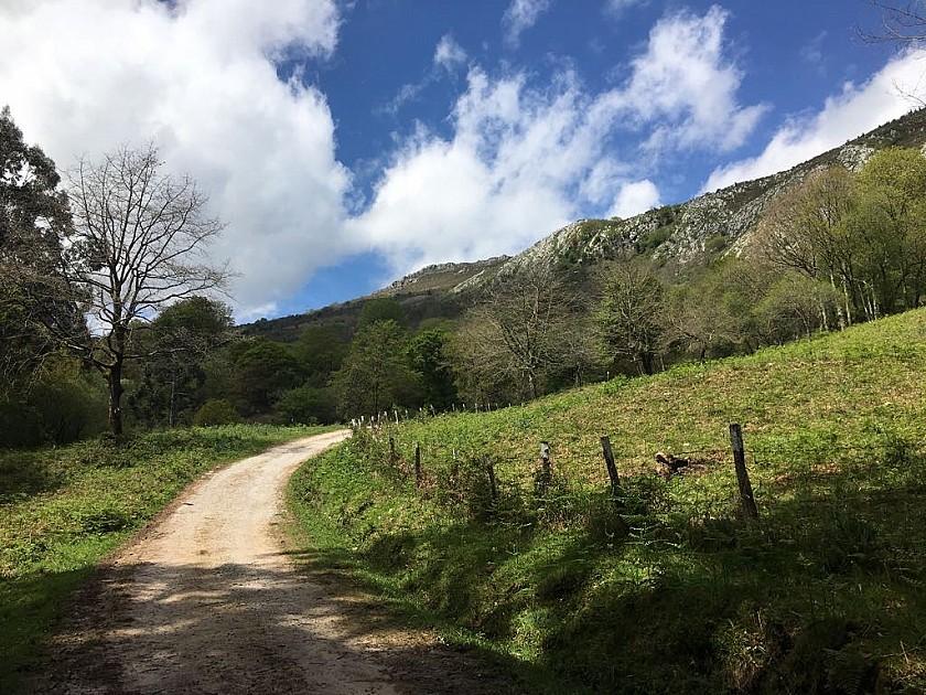 Camino de acceso a la Finca de Corrales de Buelna.