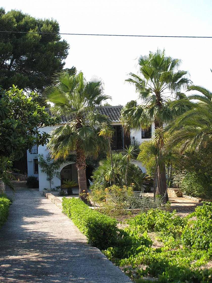 Bonito jardín con plantas mediterráneas.
